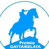 logo-premio-gattamelata-2011-padova-sostenibile-responsabile-con-foto-teatro-verdi