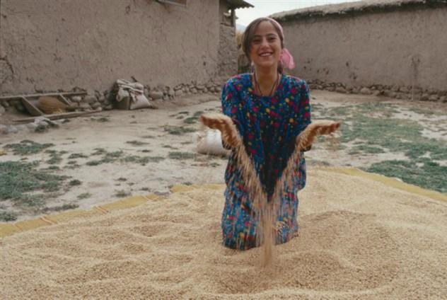 cesvi tajikistan