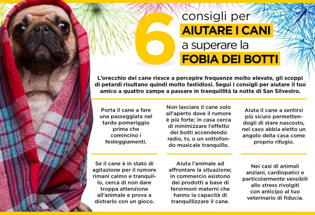 arcaplanet_infografica_botticapodanno