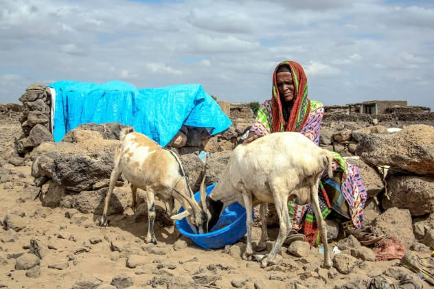 Drought in Ethiopia_ Credit Oxfam_ Open Access -12-