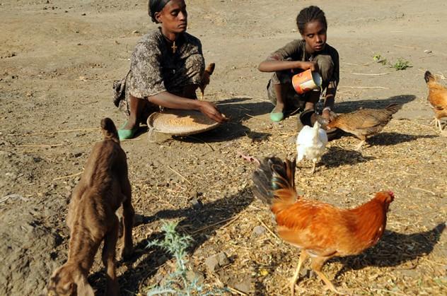30_ETIOPIA-CARESTIA-CBM