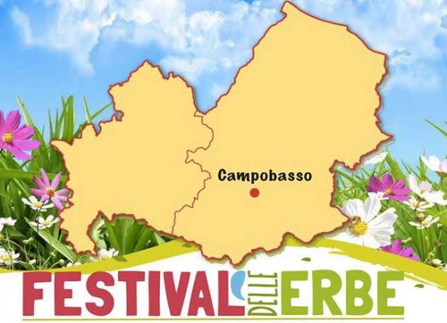 festivalerbe