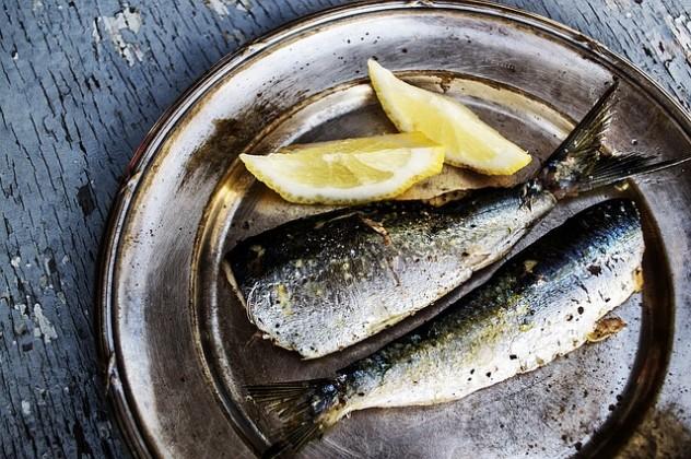 sardines-1489626_640