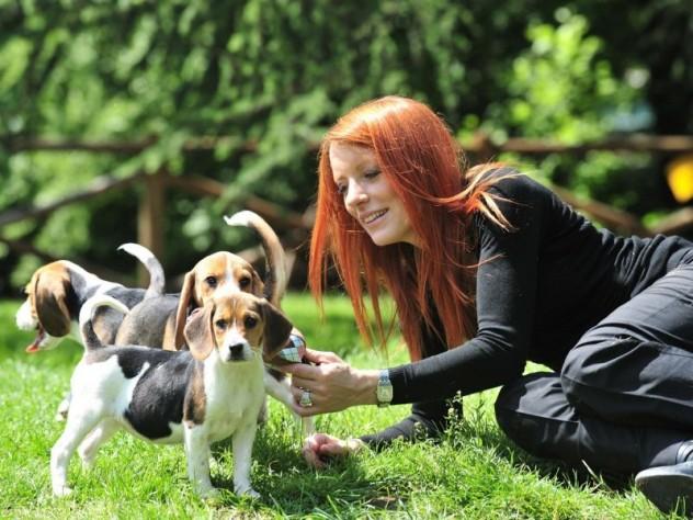 michela-vittoria-brambilla-con-beagle-2-800x600