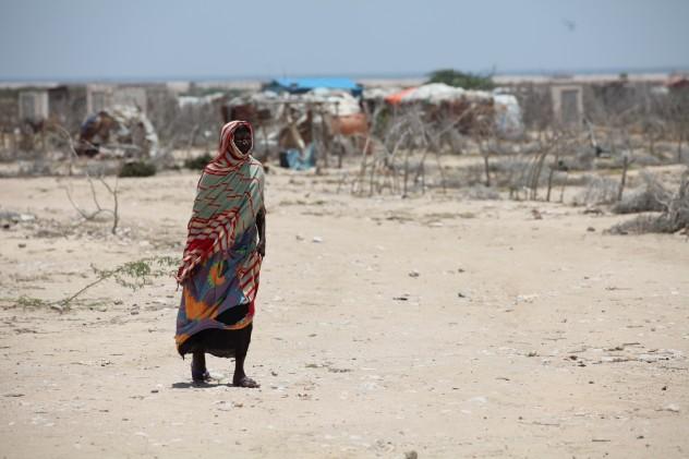 Cesvi_Somalia