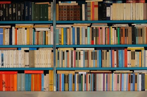 Pare che questa libreria fotografata da Ria Puksas sia uno sfondo molto gettonato per Zoom