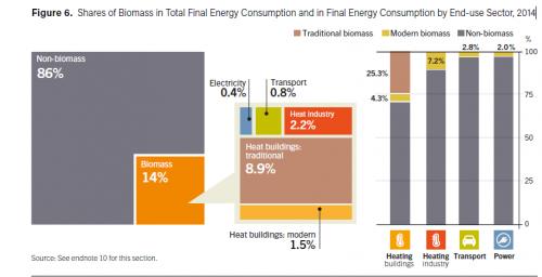 Utilizzo delle biomasse