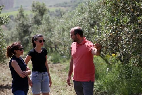 (Giuseppe, a destra, durante il tour tra i suoi uliveti in Sicilia)