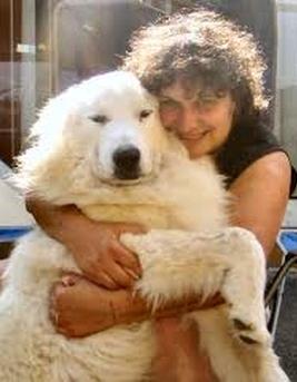 Belle & sebastien trionfa con un attore italiano: il cane marilyn