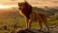 Il re leone2