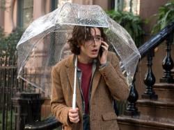 Un giorno di pioggia a New York1