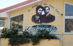 3867-colavolpe