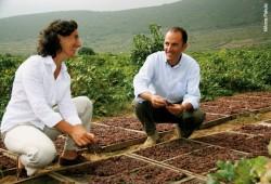 Antonio and Jose_Pantelleria-®Anna Pakula