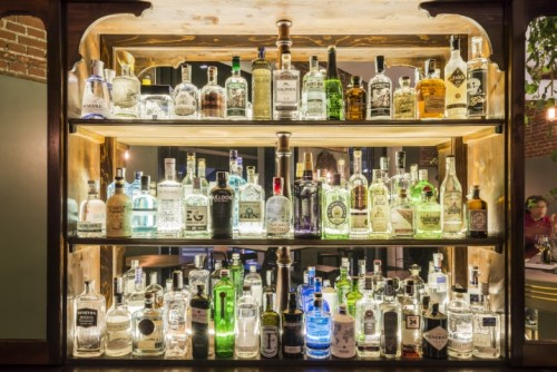 The Botanical Club - gin of the day