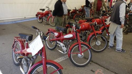 Sfilata di Motom in mostra al Moto Show di Varano