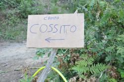 cossito_00