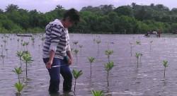 estudiantes-realizando-monitoreos-de-plantas-reforestadas-632x344