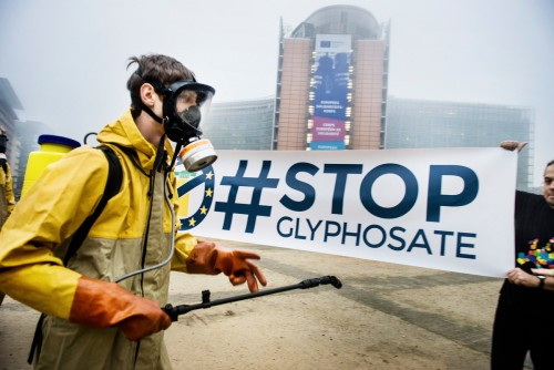 Campaigners and activists met in Brussels (and other European cities Madrid, Rome, Berlin and Paris) today to launch a European Citizens' Initiative (ECI) to ban glyphosate, reform the EU pesticide approval process, and set mandatory targets to reduce pesticide use in the EU. The goal is to collect at least one million signatures from Europeans and submit the petition before the Commission's next move to renew, withdraw or extend the EU licence of glyphosate. Glyphosate – the most widely used weedkiller in Europe – is also known as Roundup, a Monsanto brand- name. In 2015, the World Health Organization (WHO) linked glyphosate to cancer. The European Chemicals Agency (ECHA) is currently working on a safety assessment.