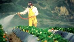 sprayingcrops-1100-632x357