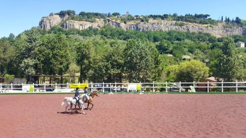 Campo equestre gomma riciclo
