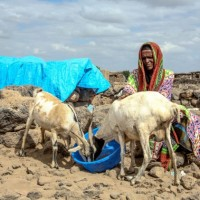 Drought-in-Ethiopia_-Credit-Oxfam_-Open-Access-12--632x421
