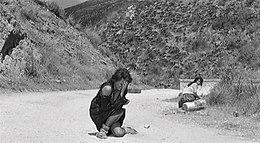 Un fotogramma del film La Ciociara, con Sophia Loren (Wikipedia)