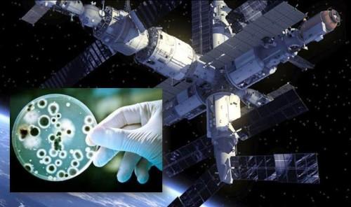 ISS-microbi-alieni1