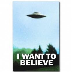 NICOLESHENTING-I-WANT-TO-BELIEVE-Il-X-Lime-Arte-Della-Seta-Poster-Stampa-UFO-Serie-TV