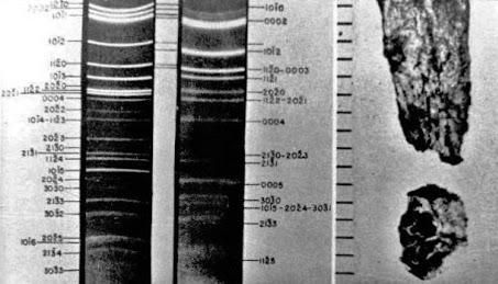 Analisi Ubatuba 1957 (003)