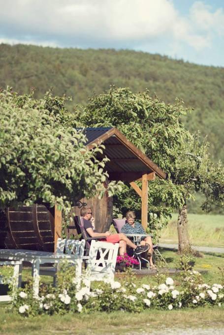 L'azienda vinicola Lerkekåsa, a sud-ovest di Oslo, la capitale della Norvegia (foto da Lerkekåsa Vingård/Facebook)