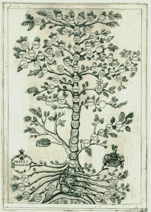 L'albero genealogico con Nambrot alla base