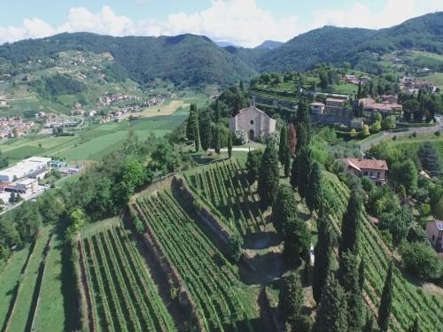 Le vigne del Castello di Grumello