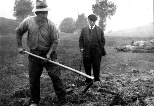 Luigi Einaudi in campagna
