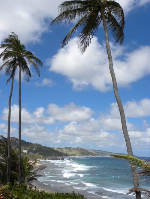 Le spiagge di Antigua