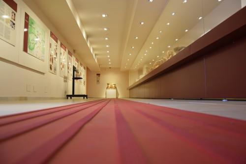 Il percorso podotattile - Museo Medma, Rosano