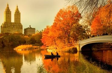 autumn central park.jpg