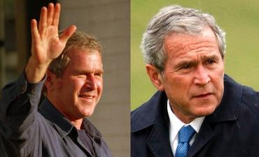 Bush-Combined.jpg