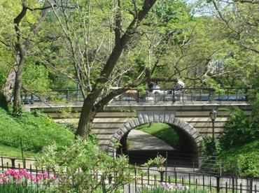 p291526-New_York-Central_Park_in_the_Spring.jpg