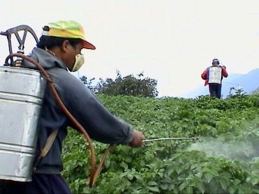 pesticide_spray1a.jpg