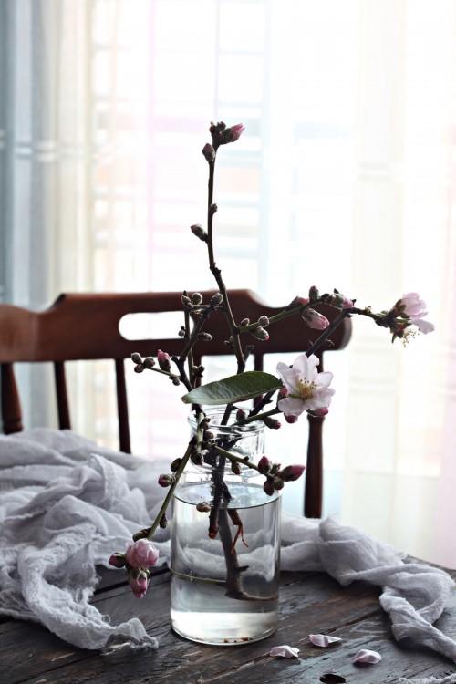 tavola-di-pasqua-fiori-di-mandorlo