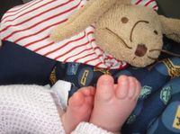 Thumbnail image for soft-toy.jpg