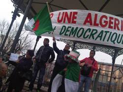 algerini2.jpg