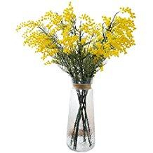 bouquet di mimosejpg