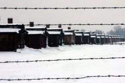 Campo di concentramento di Birkenau