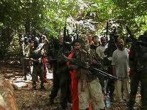 Immagine di anteprima per militanti mend 2.jpg