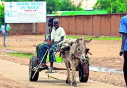 NIAMEY, NIGER - AUGUST 12: Nigerois boys drive a donkey driven cart along the side of the road on August 12, 2005 Niamey, Nigeria. Niamey is the Capital of Niger. Niger is experiencing a food crisis which is threatening the lives of thousands in the impoverished West African nation. A combination of sever drought and a locust plague has caused the famine which has affected at least 2 million people in Niger and approximatly 5 million in the region. Niger is the second poorest country in the world, with 64 percent of the 12 millions inhabitants surviving on less than USD1 (81 euro cents) day. (Photo by Daniel Berehulak/Getty Images)